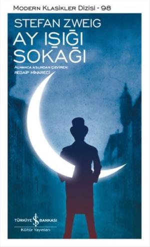 Kitap Stefan Zweig Ay Işığı Sokağı TürkçeKitap